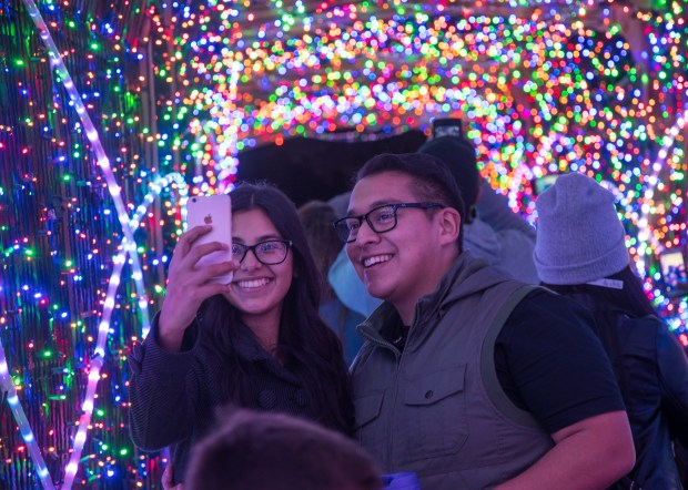 On Dec. 7 and 14 the 21 and over crowd will get to drink up and eat in a private lounge at the Los Angeles Zoo and Botanical Gardens during Holiday Happy Hours. (Photo by Jamie Pham)