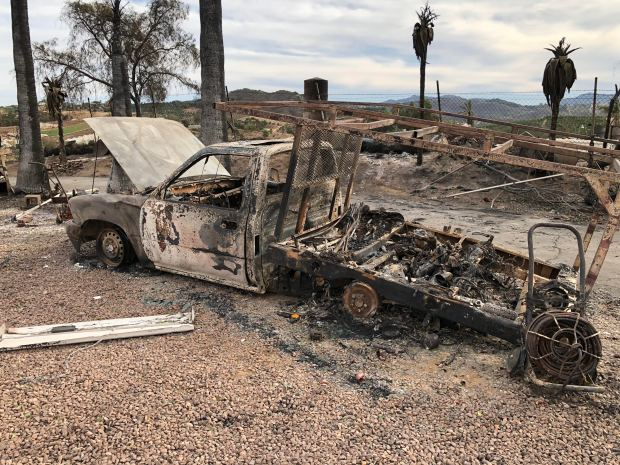 A South Bay family that has owned nurseries for 40 years lost their main greenhouses and growing property just outside of San Diego in the Lilac Fire. Photos by Paul Isley.
