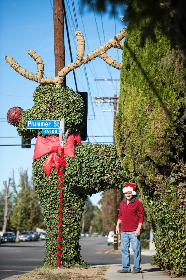For 30 years, Brian Welch, has been trimming the ivy poodle outside his home at the corner of Plummer Street and Hayvenhurst Avenue in North Hills.(Photo by Sarah Reingewirtz, Pasadena Star-News/SCNG)