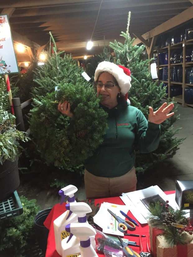 Vicky Perez, Armstrong Garden Centers Claremont instructor, gets into the holiday spirit. (Photo by Suzanne Sproul)