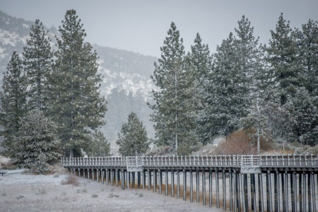 A winter scene during Tuesday's snow storm in the Big Bear Valley, Tuesday, Jan. 9, 2018. (Eric Reed/For The Sun/SCNG)