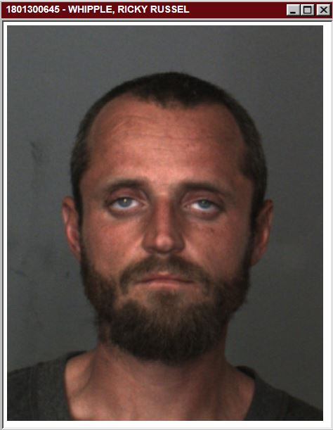 Ricky Russell Whipple, 29, of Fontana is accused of setting 11 fires in the Cajon Pass Monday, Jan. 15, 2018. (Courtesy San Bernardino County Sheriff's Department)