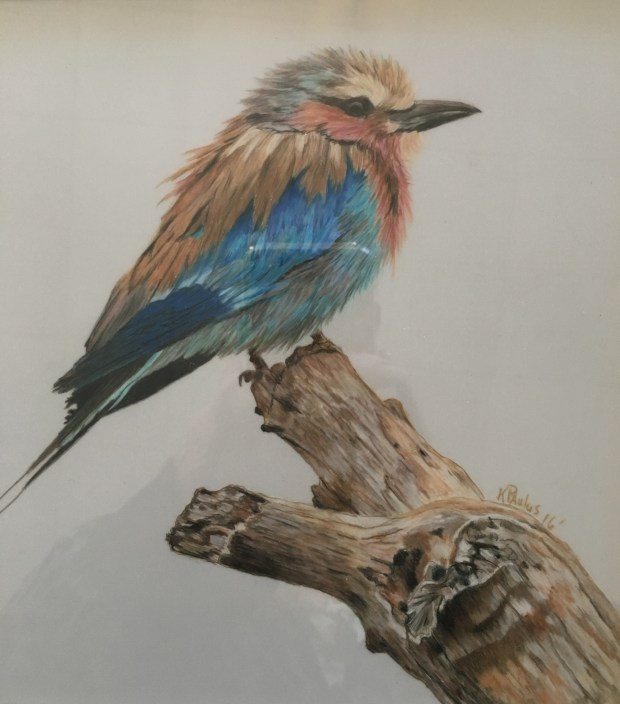 This drawing by Kathy Paulus won first place in Redlands Art Association's 49th annual Multi-Media Mini Show. (Courtesy Photo)