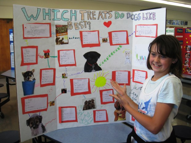 Curly Girl's science project from a long-ago past, not surprisingly, managed to involve dogs. Photo by Marla Jo Fisher