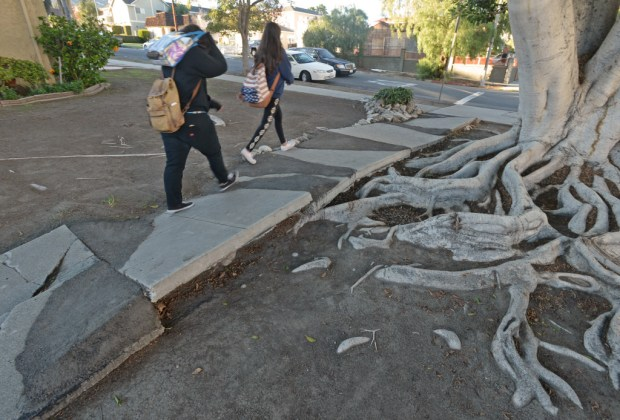 Children walking home from school cross an undulating sidewalk thay tree roots push up on Patton Avenue in San Pedro Wednesday, November 30, 2016, San Pedro, CA. Asphalt was used to fill in the sharp edges of the raised concrete slabs. After struggling for decades to fix Los Angeles' sidewalks, the city released its plan to have them fixed.Photo by Steve McCrank, Daily Breeze/SCNG
