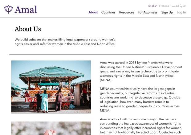 A mock-up of Amal's homepage in English. (Photo courtesy of Soha Eshraghi)