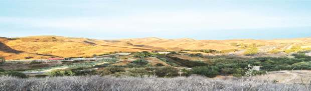 Rendering of a proposed wildlife crossing in LA County. By Clark Stevens, Resource Conservation District of the Santa Monica Mountains.