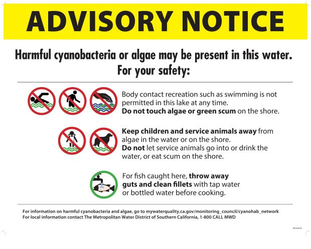 The Metropolitan Water District issued an advisory notice about the algal bloom that warned boatgoers to not drink or touch the water. (Photo courtesy of Metropolitan Water District)