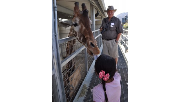 A visitor meets a friendly giraffe at the Living Desert Zoo and Gardens in Palm Desert. (Photo courtesy of the Living Desert).