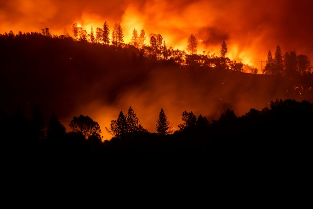 Cal Fire to speed up the thinning of forests to lessen wildfire risks