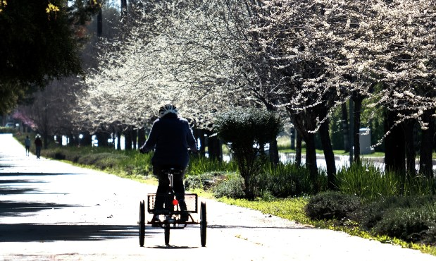 A thief stole this 91-year-old Tarzana woman's tricycle — but they couldn't take her big heart