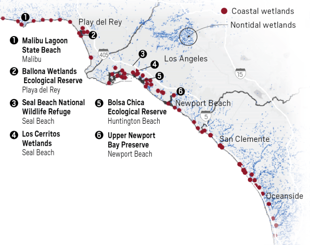 This is where you can find the 10% of remaining coastal wetlands in LA and Orange Counties