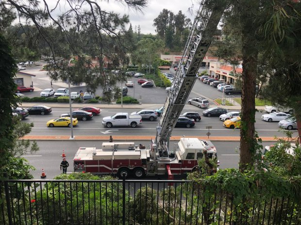 Tree trimmer killed while working in Laguna Hills – Orange