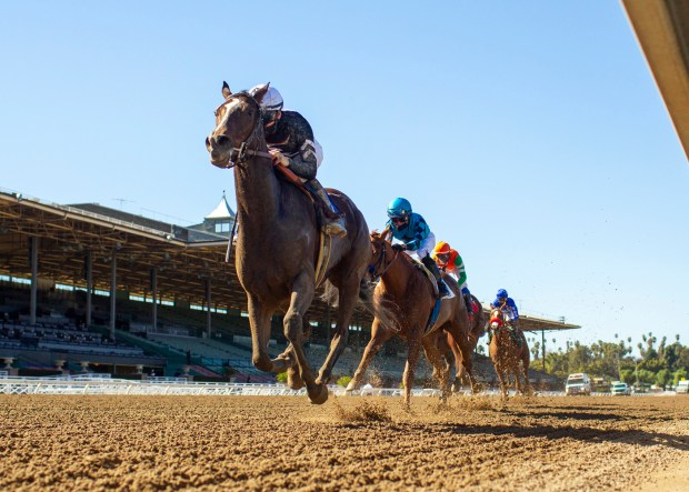 Concert Tour rocks San Vicente Stakes at Santa Anita
