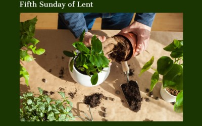 March 21, 2021 – Fifth Sunday of Lent
