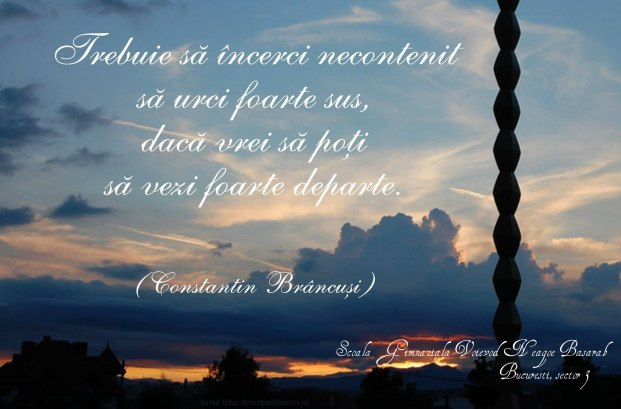 citat Brancusi- Scoala Voievod Neagoe basarab
