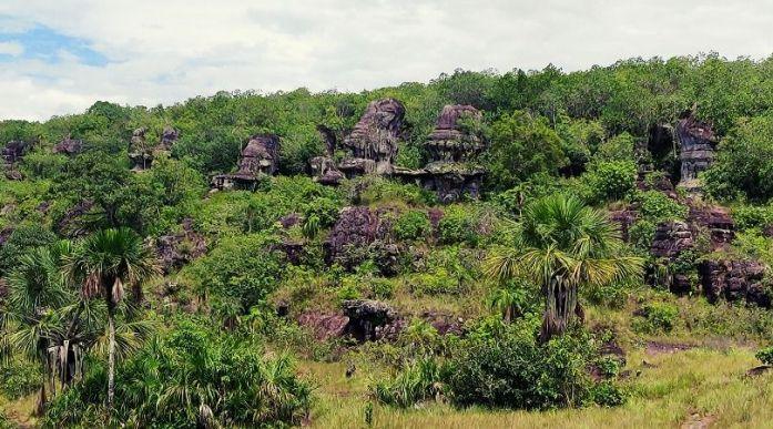 viaggio in colombia amazzonia foresta del guaviare