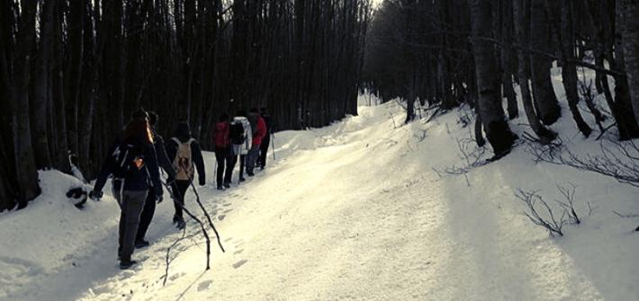ciaspolata monte falterona foreste casentinesi trekking scomfortzone