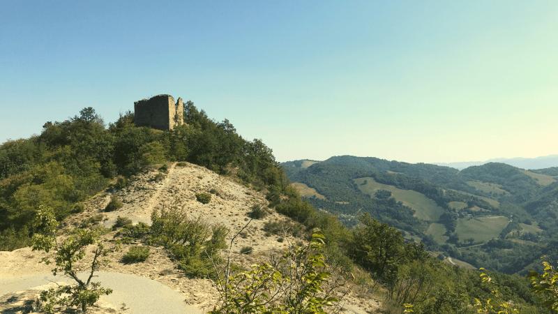 Trekking sul monte tiravento foreste casentinesi premilcuore