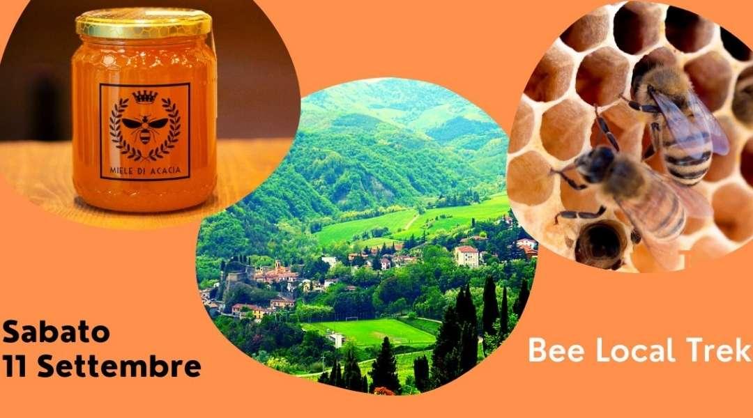 trekking e degustazione miele a predappio