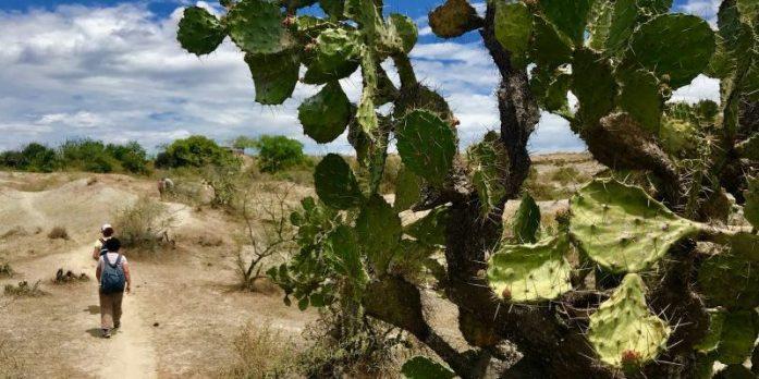 """La Tatacoa – """"Il deserto che non è un deserto"""