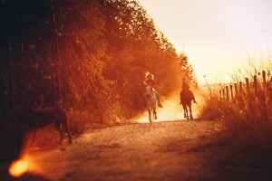 people riding horseback during sunset