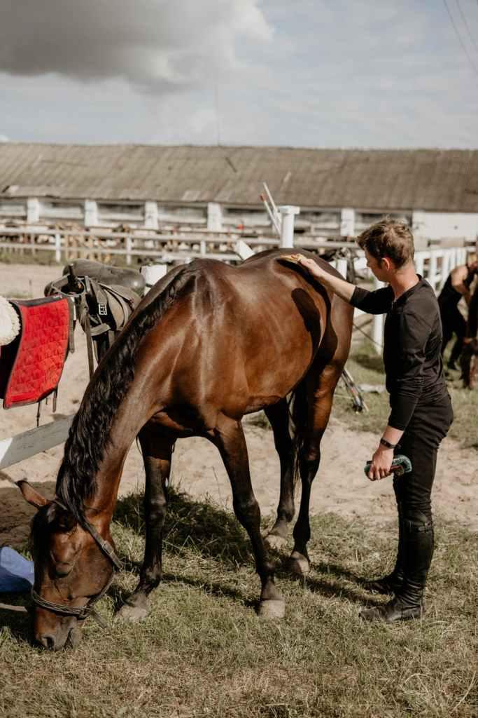 man in black jacket standing beside brown horse