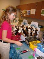 Colorado School Fundraising