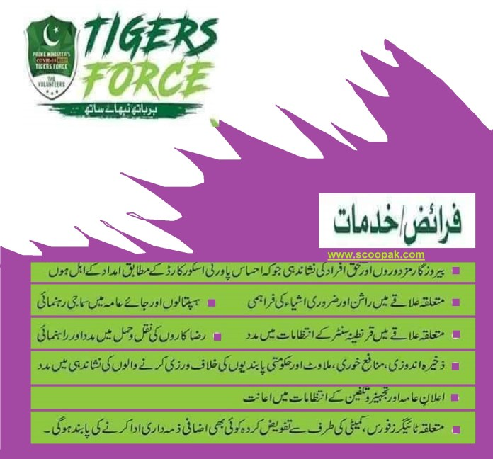 Condition for Tiger Force