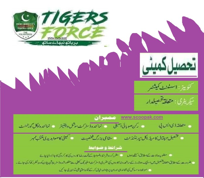 Tiger Force District Kameety