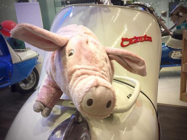 Cezeta_Pig