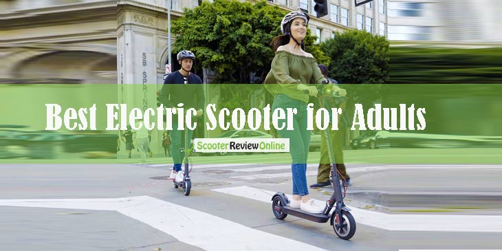 Best Electric Scooter for Adults