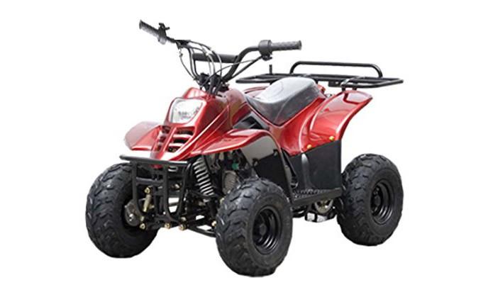 TAO TAO 110cc ATV Fully Automatic Four Wheelers
