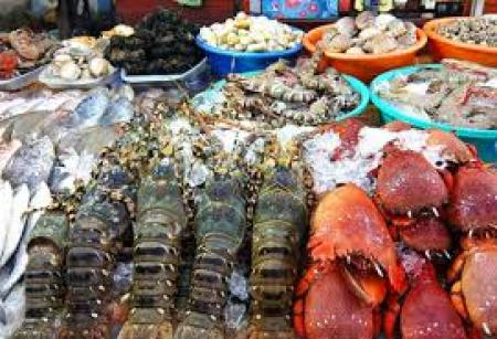 Dinh Cau night market 2