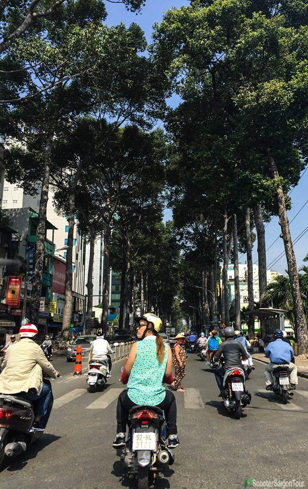 lush green tree in saigon on bike