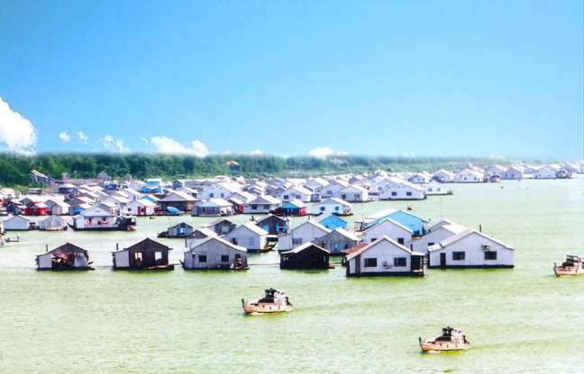 fish-farm-in-con-tien-an-giang Top things to see in An Giang