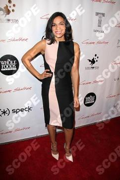 """at the """"Gimme Shelter"""" Los Angeles Screening, Egyptian Theater, Hollywood, CA 01-14-14"""