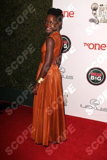 at the 45th NAACP Image Awards Arrivals , Pasadena Civic Auditorium, Pasadena, CA 02-22-14