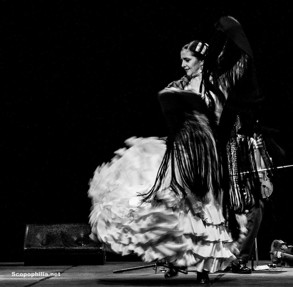Chekara So close so far - Flamenco-7120-2