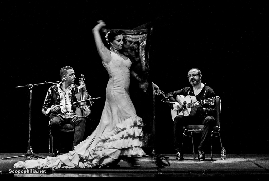 Chekara So close so far - Flamenco-7125
