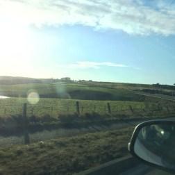 Beautiful Green Pastures!