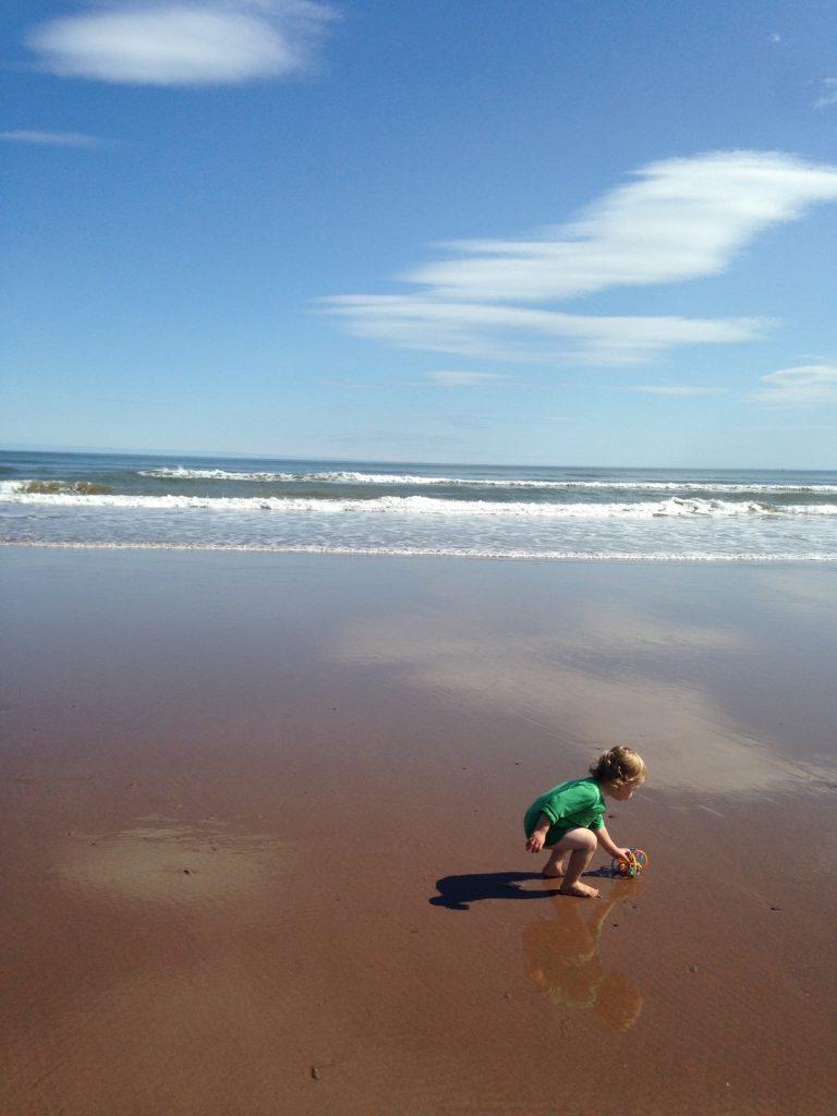 Lunan Bay Beach, Scotland