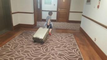 Little traveller pulls the family case.
