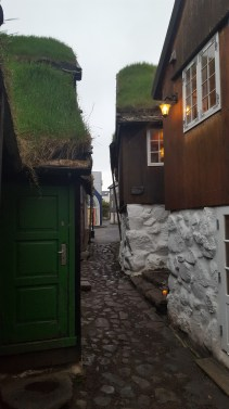 Quality restaurants with signature grass roofs in Tórshavn
