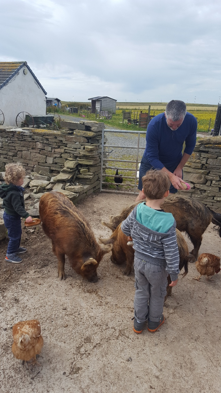 3 Day Mainland Orkney Itinerary for Families and Kids