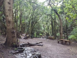Hiking La Gomera