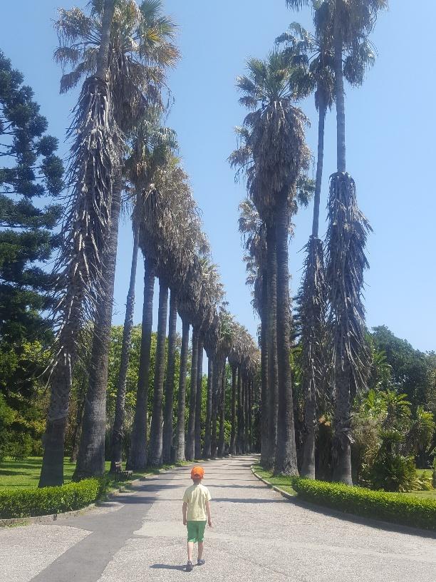 Lisbon's Botanic Gardens