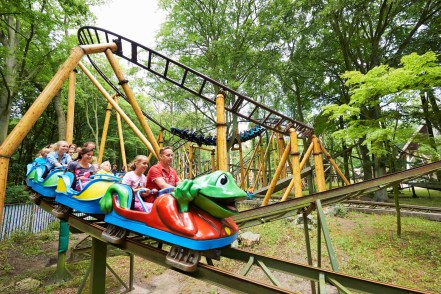 Frog Rollercoaster