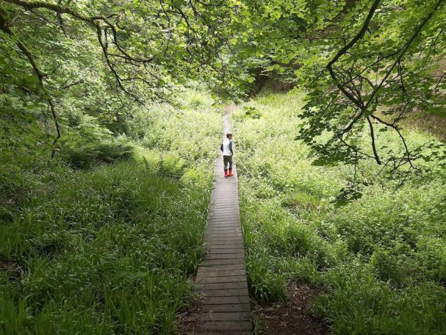 Family Walks in Aberdeen and Aberdeenshire