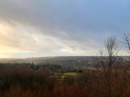 Tollohil Forest Walk